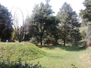 2015-07-09-14-parcoimola